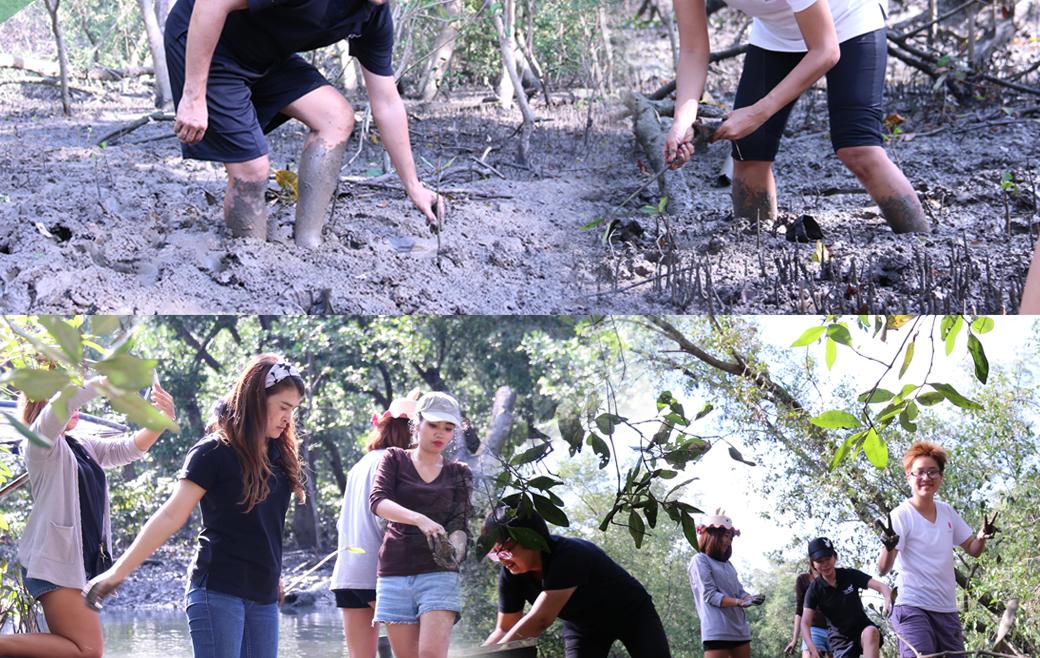 กิจกรรมอาสาร่วมกันทำความดี ปลูกป่าชายเลน ณ ป่าชายเลน จ.สมุทรสาคร
